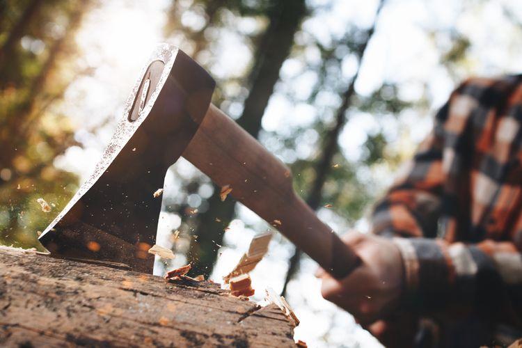 Kempovacia, kálacia, tesárska sekera na drevo do lesa? Recenzie chvália Fiskars, Stihl, Husqvarna