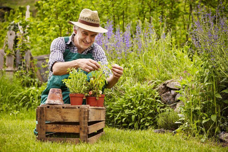Muž záhradkár - výber vhodného darčeka