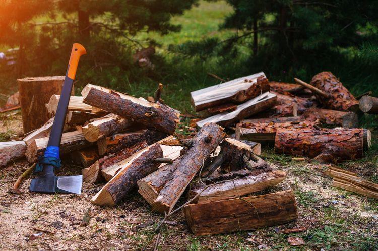 Sekera s plastovým poriskom na rúbanie dreva