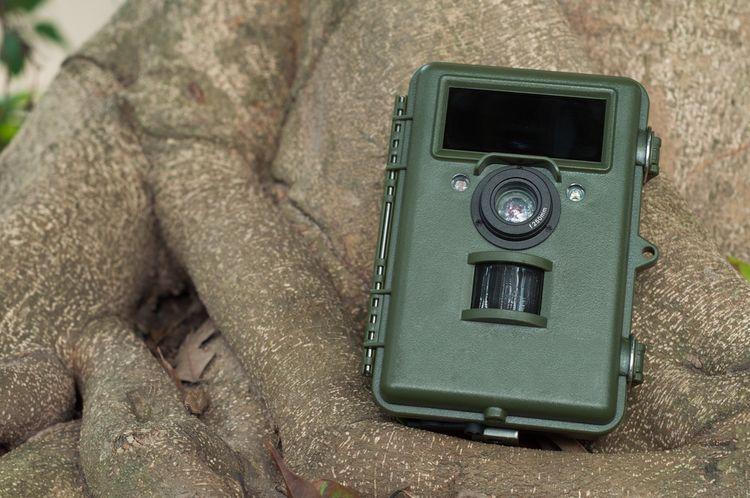 Zelená fotopasca do exteriéru