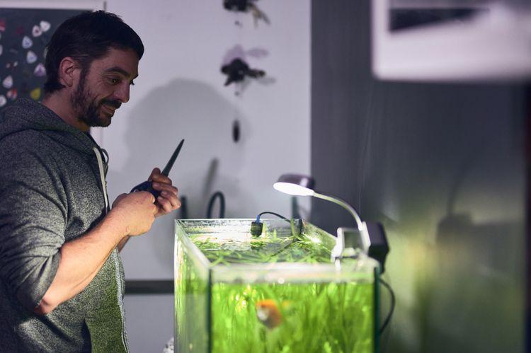 Pri zakladaní akvária by ste nemali zabúdať na správne osvetlenie