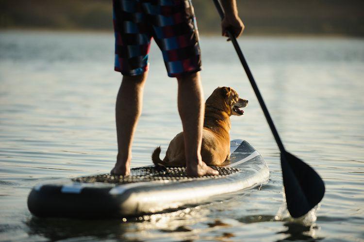 Pádlo paddleboardu – rukoväť, žrď