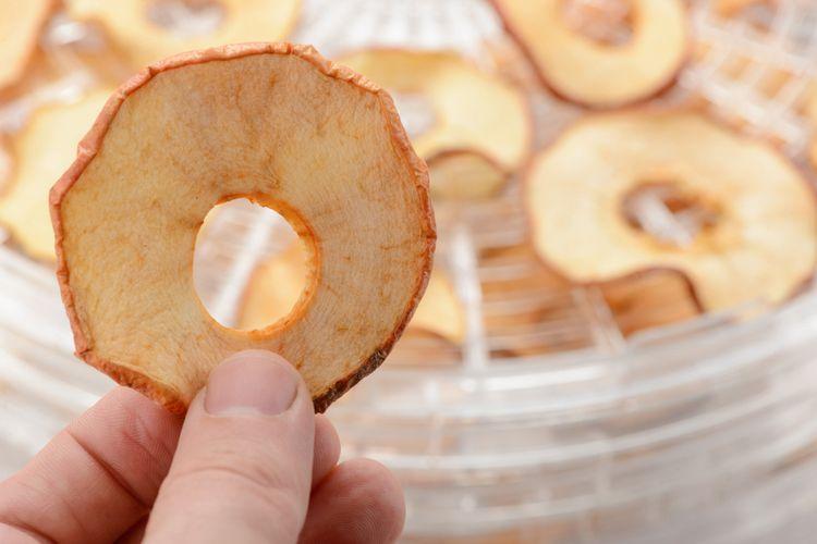 Sušenie jabĺk v bielej okrúhlej sušičke ovocia