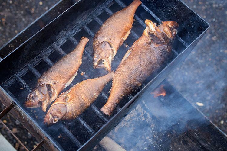 Hranatá udiareň na ryby
