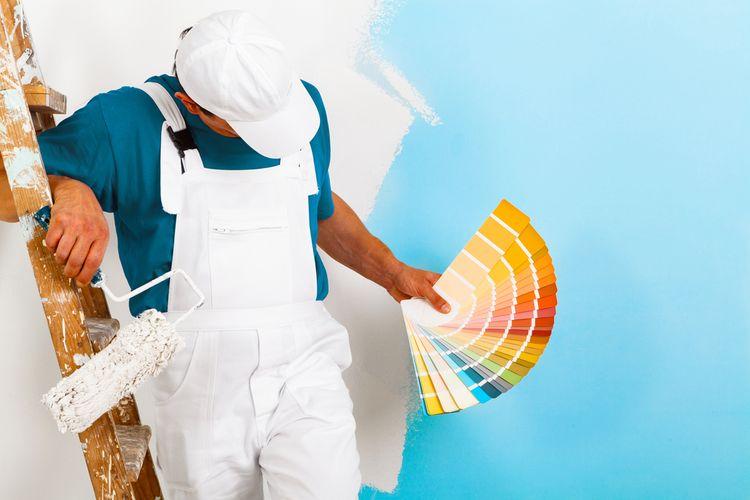Vzorkovník farieb na stenu