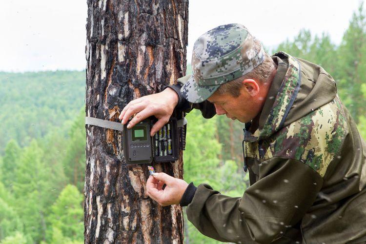 Fotopasca na sledovanie zveri