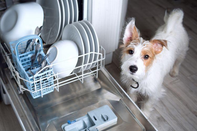naložená úzka umývačka riadu