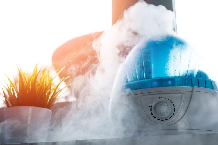 Najlepší zvlhčovač vzduchu pre deti a alergikov s ionizátorom? Recenzie a test poradia